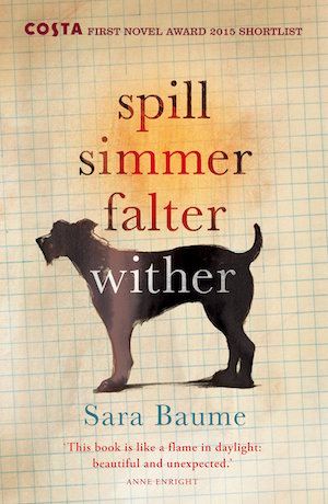 Spill Simmer Falter Wither by Sara Baume Windmill Books edition